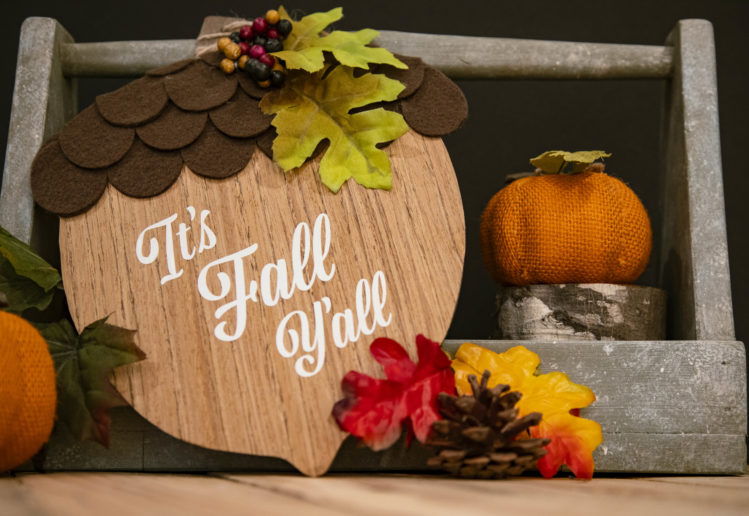 Easy Fall Decorating Dollar Store Diy Ideas Fall Acorn Door